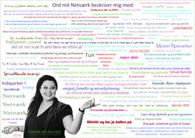 Ord som Carina Heckschers Netværk beskriver hende med